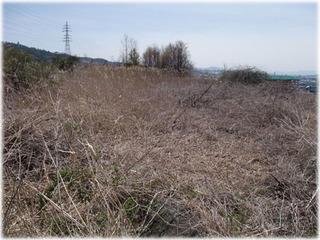 写真1.2009年4月の農地の様子.JPG
