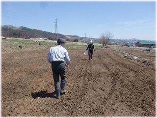 写真2.2011年4月の農地の様子.JPG